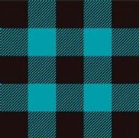 Turquoise/Black Buffalo Plaid Laminated Vinyl 12x12