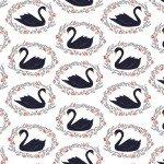 Dear Stella - White with Black Swans
