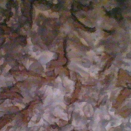 Batik Cascade Sienna