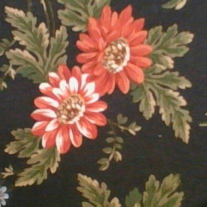 Chrysanthemum 2000 A