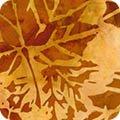 Cornucopia 8-Harvest