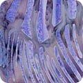 Artisan Batiks Wavelengths-Lavender