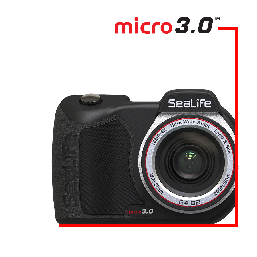 Micro 3.0 64GB