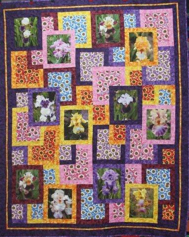 Iris Garden Pattern