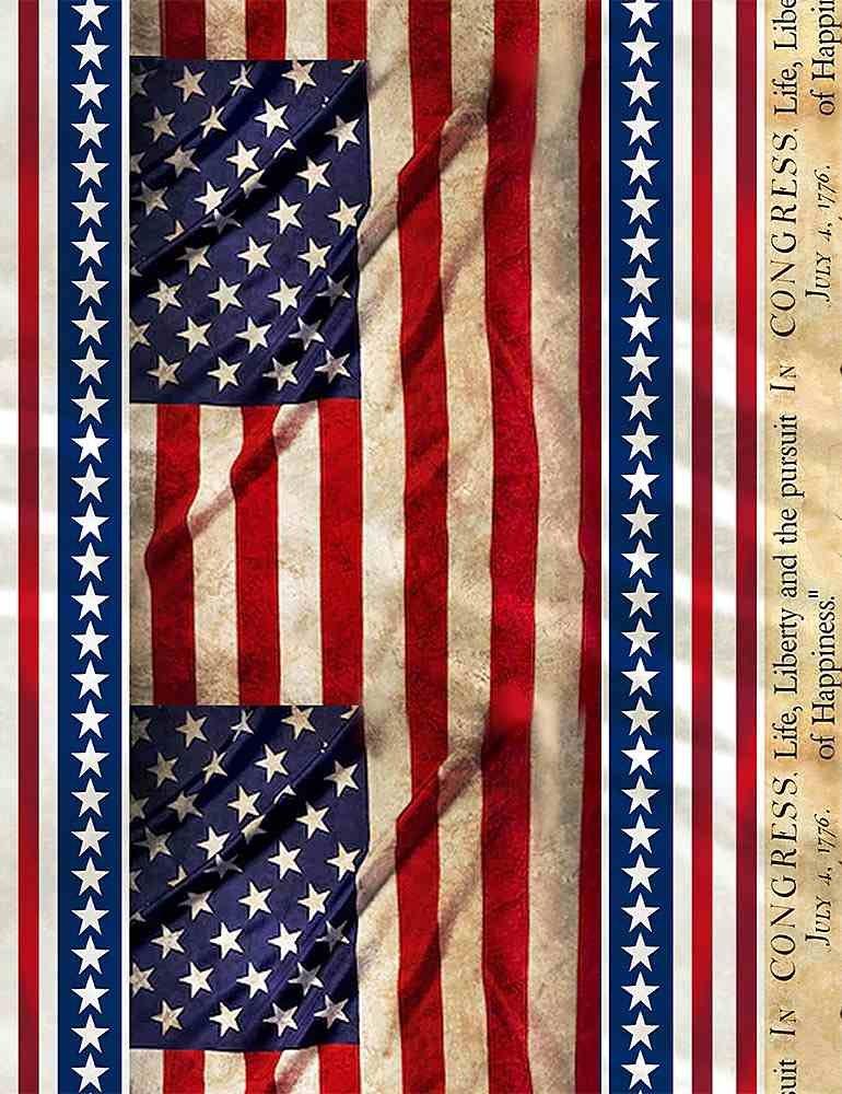 USA WE THE PEOPLE 11 STRIPE