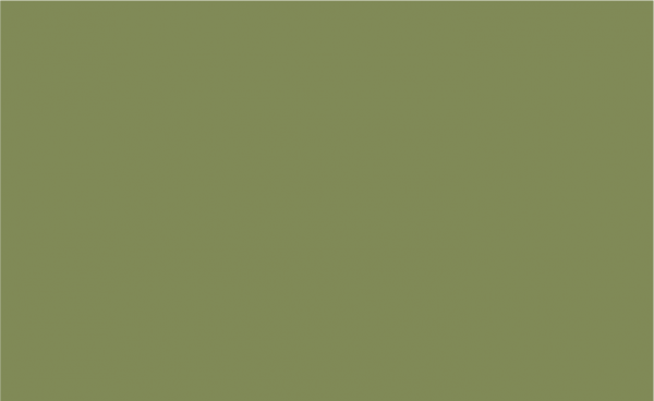 PSV Alli Green 12X12