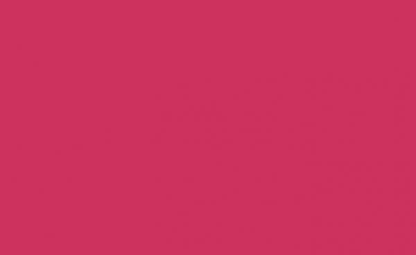 PSV Tropical Pink 12X12