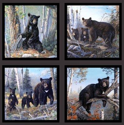 Bear Pillow Panel