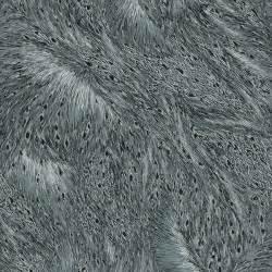 Nocturne Cotton Dark Gray/Silver 7593 654