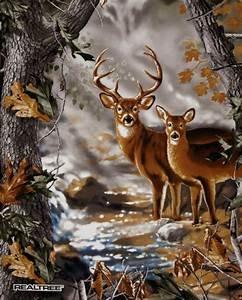 Panel Deer