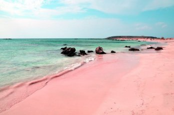 image of pink sand beach
