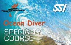 Ocean Diver Card