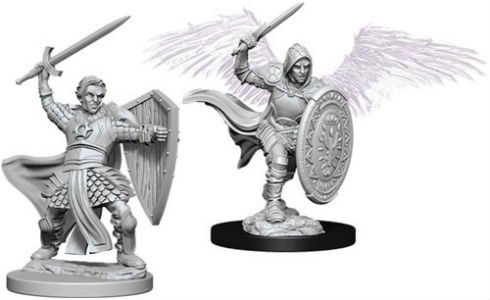 D&D Minis: Aasimar Male Paladin