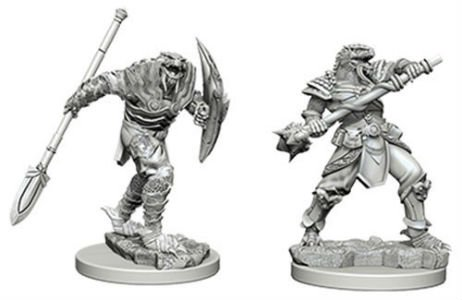 D&D Minis: Dragonborn Fighter with Spear