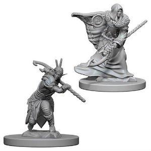 Elf Druid Male D&D Nolzur's Miniatures