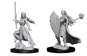 D&D Minis: Elf Female Paladin