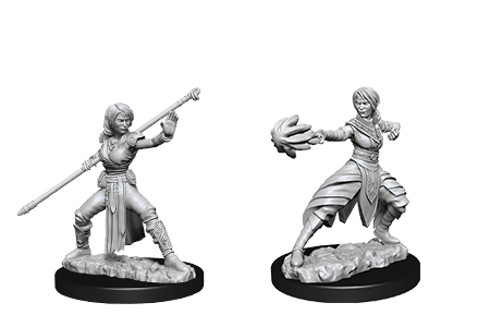 D&D Minis: Half-Elf Female Monk