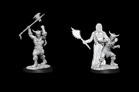 D&D Minis: Male Human Barbarian