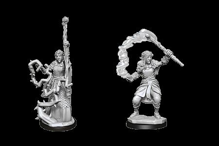 Firbolg Druid Female D&D Nolzur's Miniatres