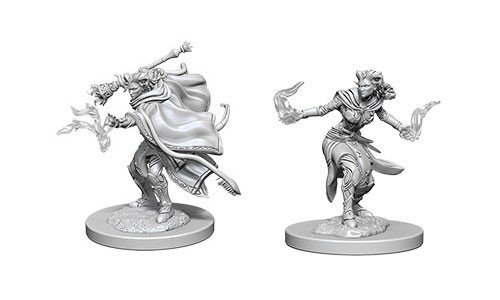 D&D Minis: Tiefling Female Warlock