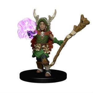 Wardlings: Druid & Tree Creature