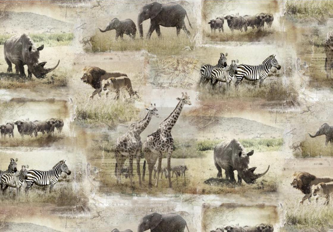 Global Animals - GBLX