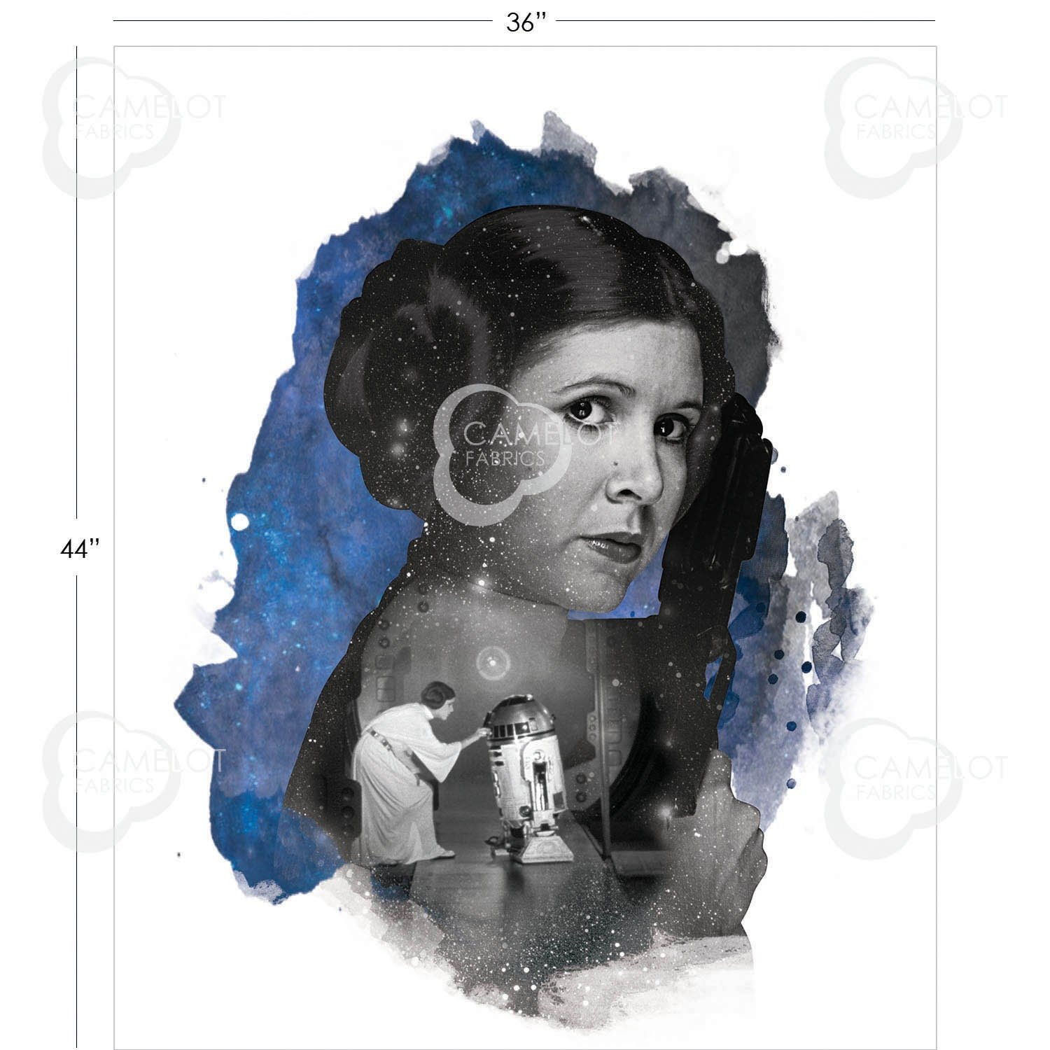 Princess Leia Panel