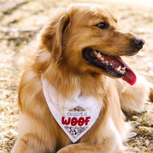 Kimberbell FITB Pet Kerchief: Set of 2 - August