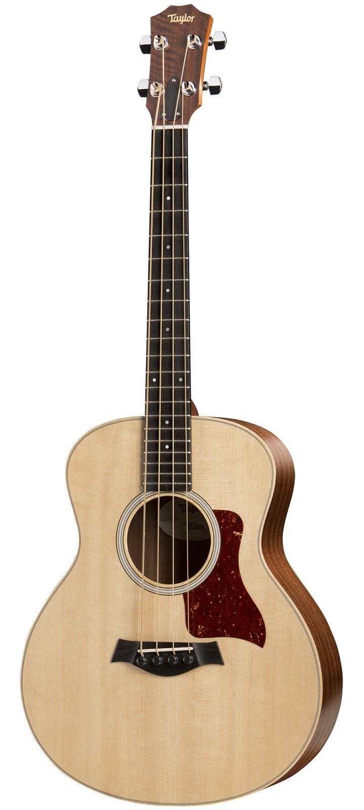 Taylor GS Mini-e Acoustic/Electric Bass with Deluxe Hard Gigbag