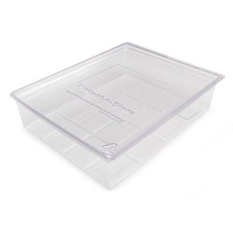 Protect N Store Box Clear 8.5 x 11 Acid Free