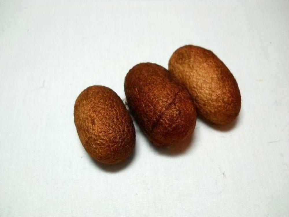 Dulce de Leche-Silk Cocoon