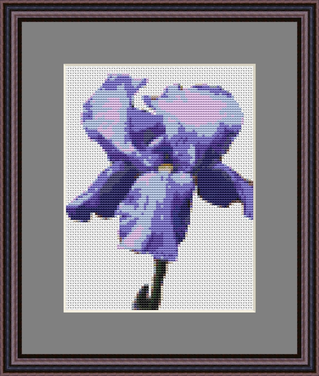 Kentucky Iris Cross Stitch Kit