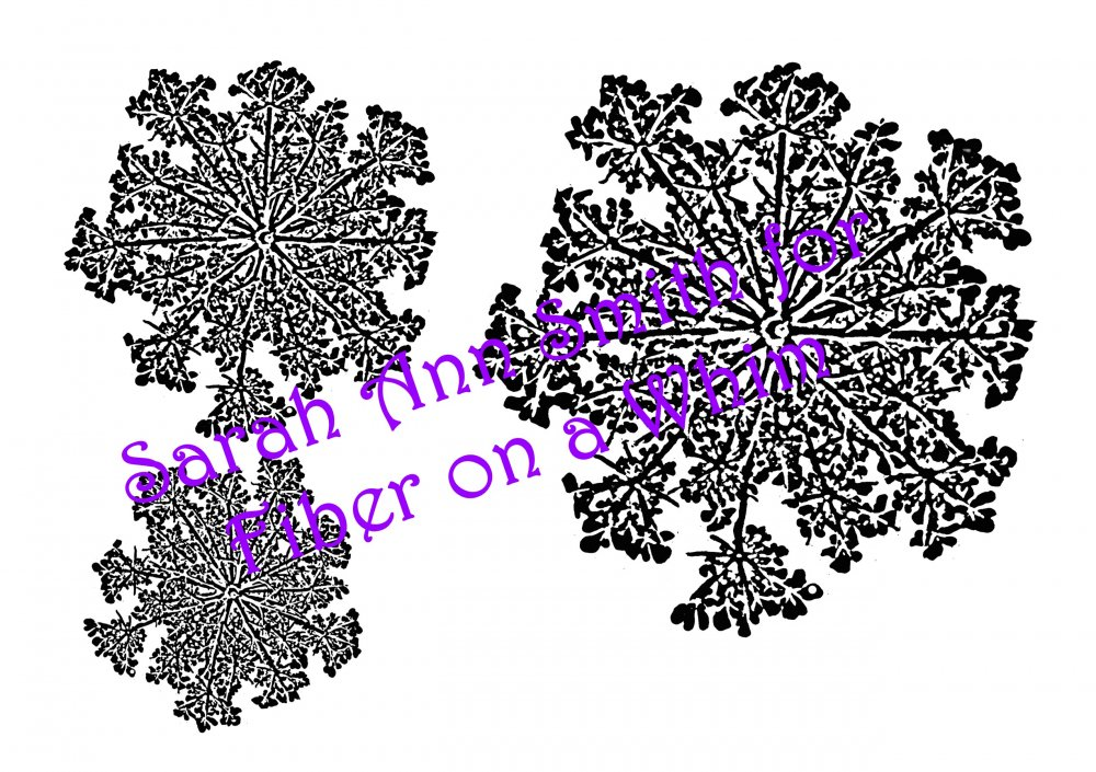 Queen Anne's Lace Thermofax Screen by Sarah Ann Smith for FOAW