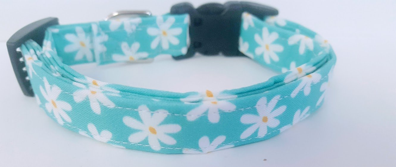 Aqua Daisy Chain Collar