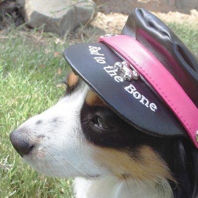 Faux Leather Biker Dog Hat
