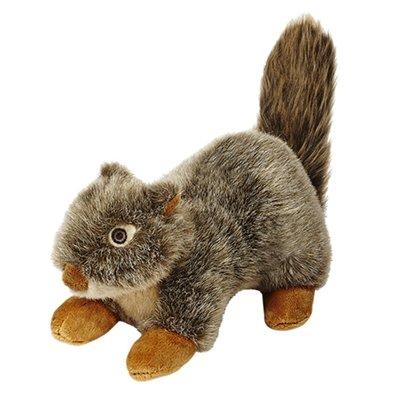 Nuts Squirrel Dog Toy