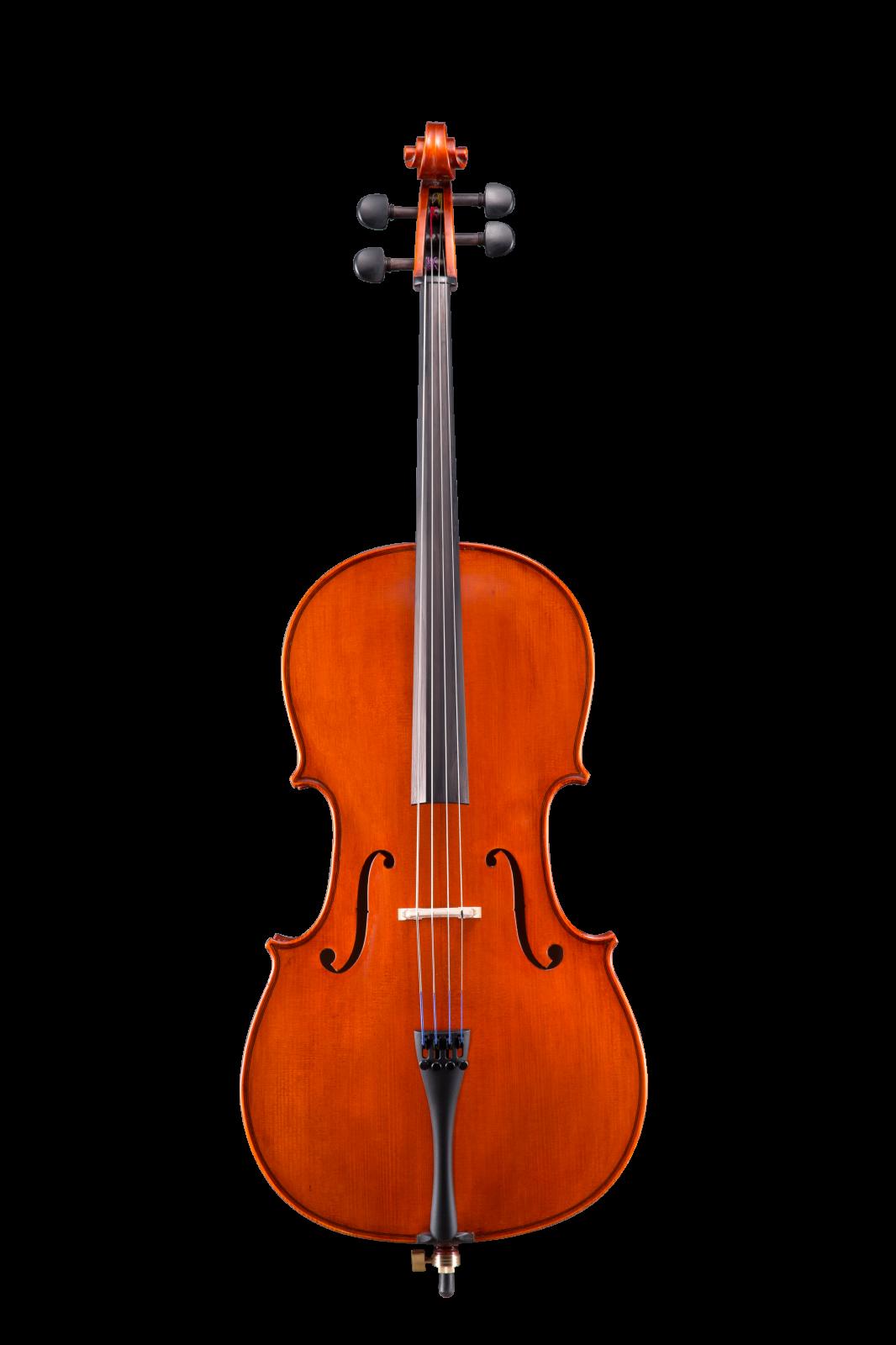 Eastman Violin 4/4 VL100