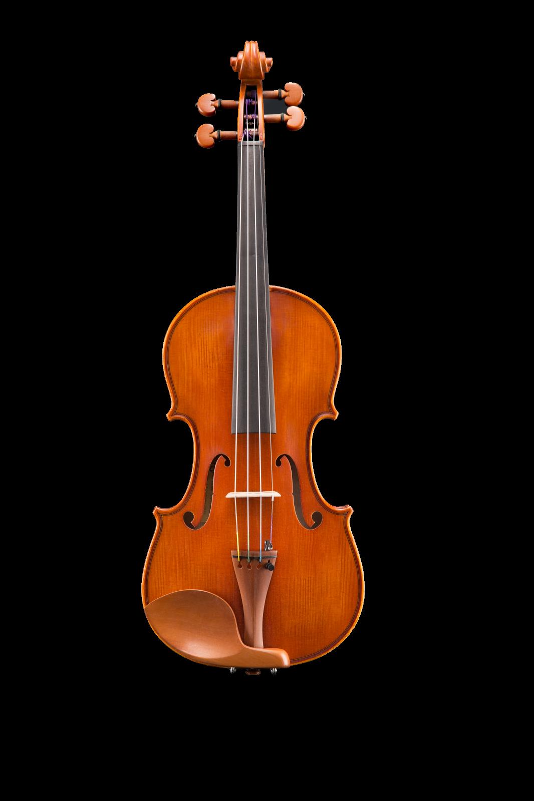 Eastman Violin 4/4 VL200