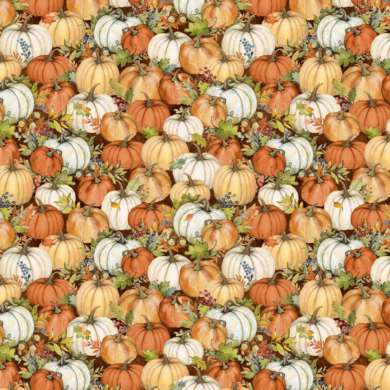 Seeds of Gratitude Dark Brown Packed Pumpkins 39657 258