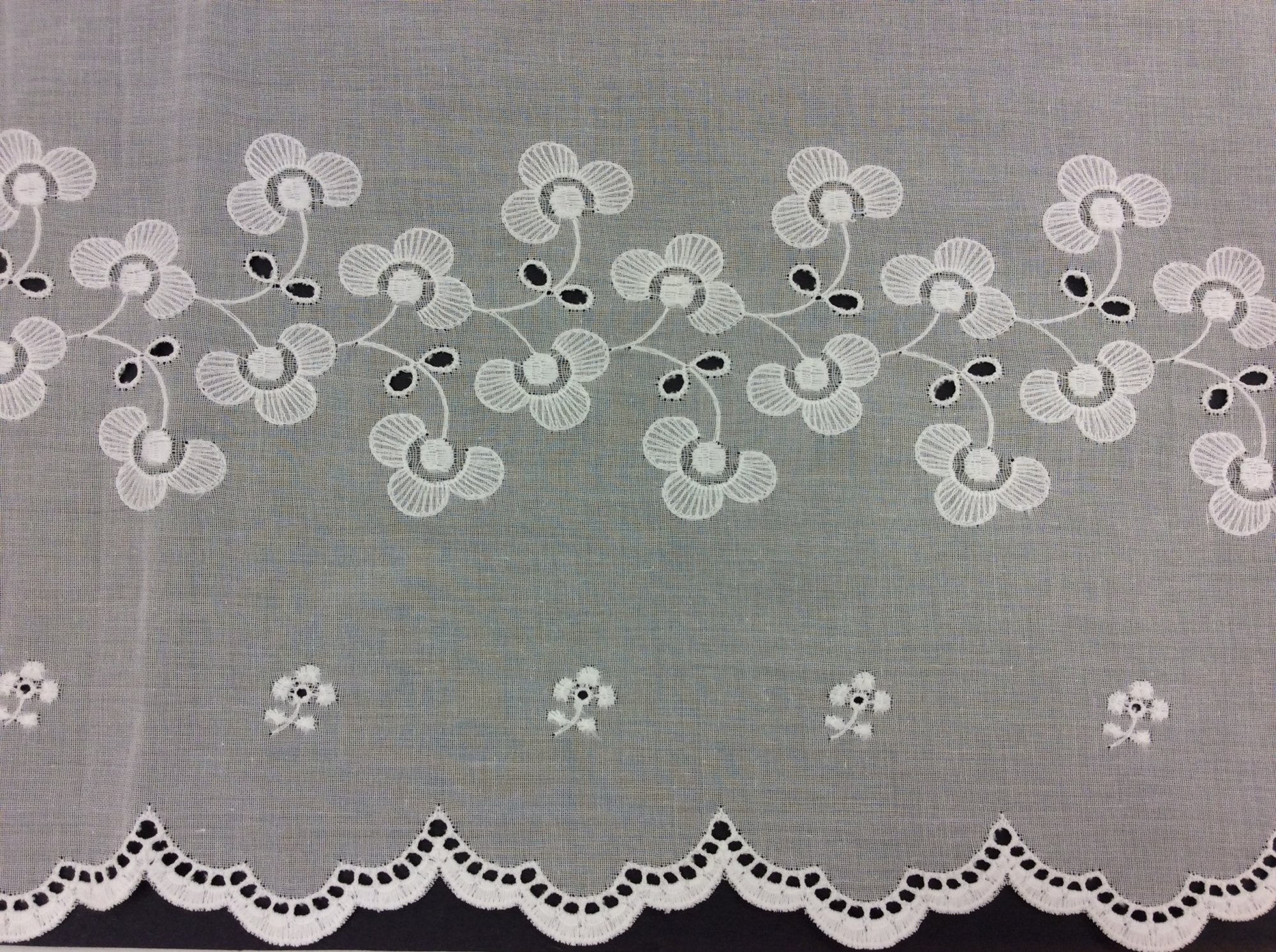 Embroidered Swiss Cotton Voile, Double Border