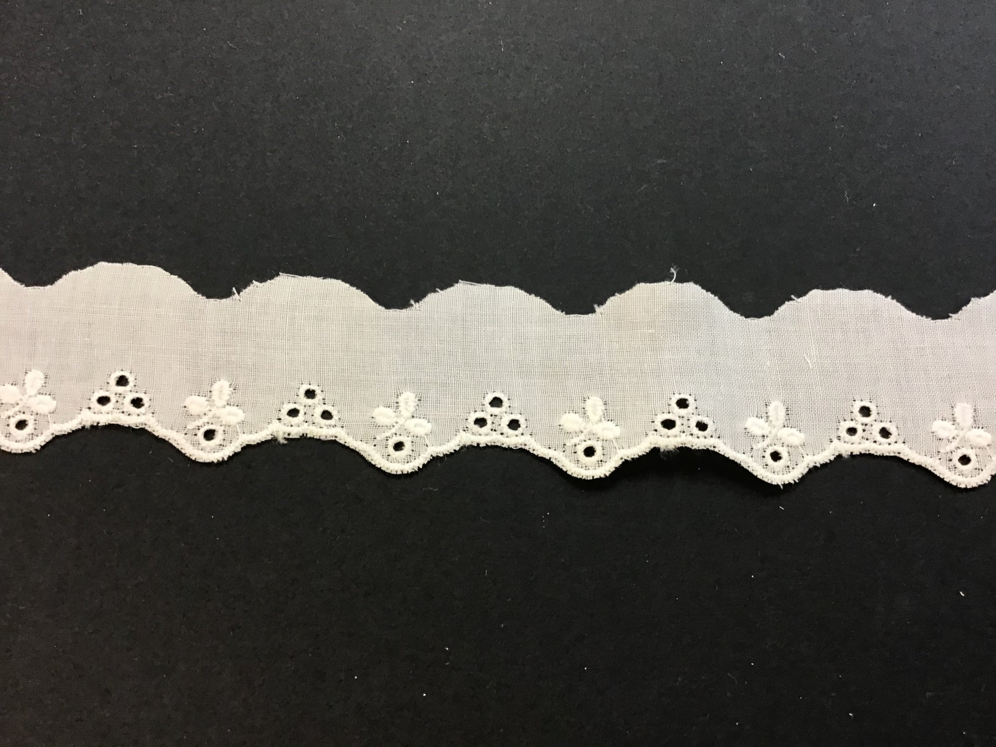 Swiss Embroidered Edging 1 Inch Champagne 69903-02