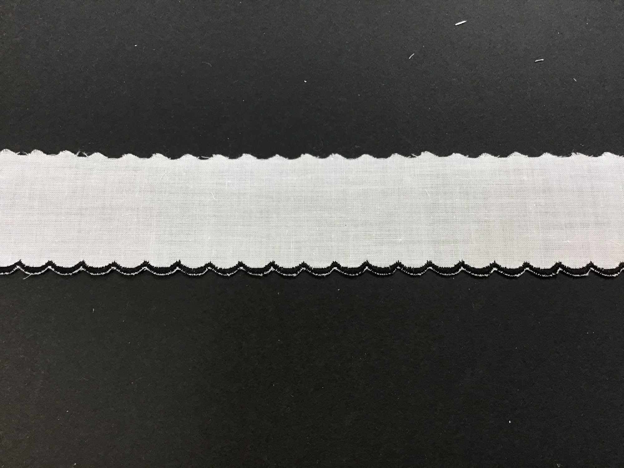 Swiss Embroidered Edging 1.5 Inch Black on White 02A