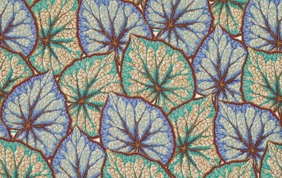 Begonia Leaves- Grey