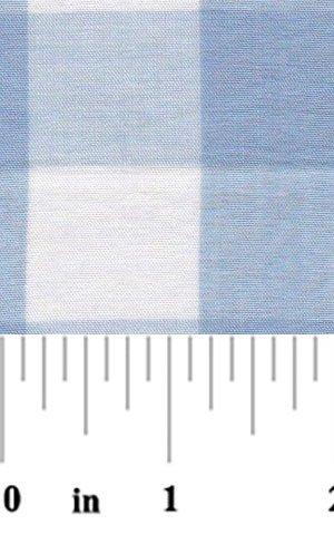 Blue 1 Inch Check