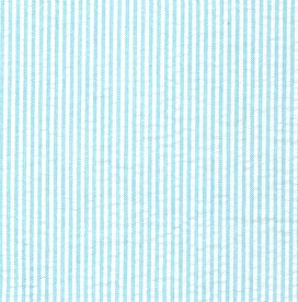 Mini Stripe Aqua Seersucker
