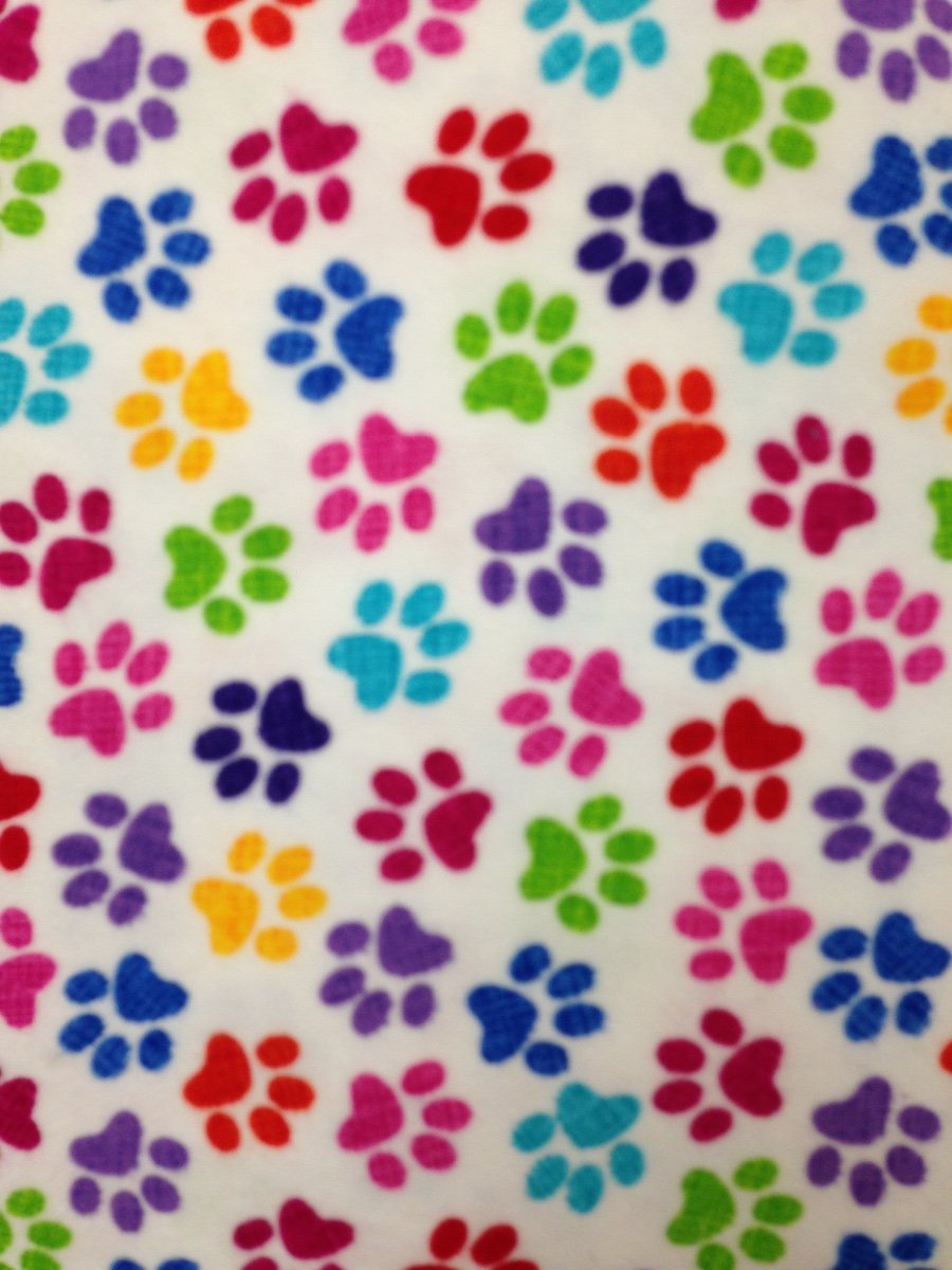 Rainbow Paw Prints Hemstitched Flannel