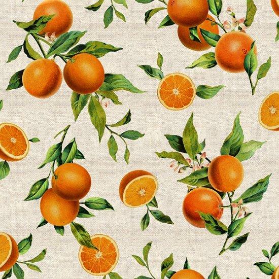 Orchard Bliss Orange R4683 13