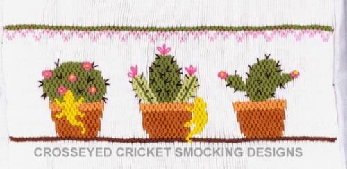 Succulents CC