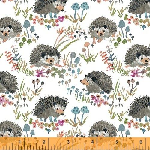 Fox Wood Hedgehogs