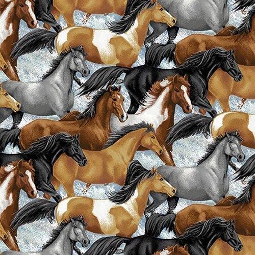 Horse Whisper Running Horses